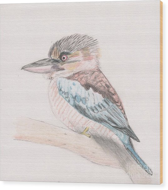 Kookaburra Cuteness Wood Print