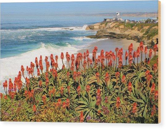 La Jolla Coast With Flowers Blooming Wood Print