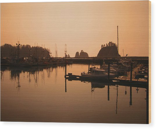 La Push In The Afternoon Wood Print