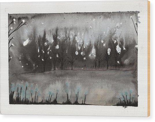 Lac En Cendres Wood Print