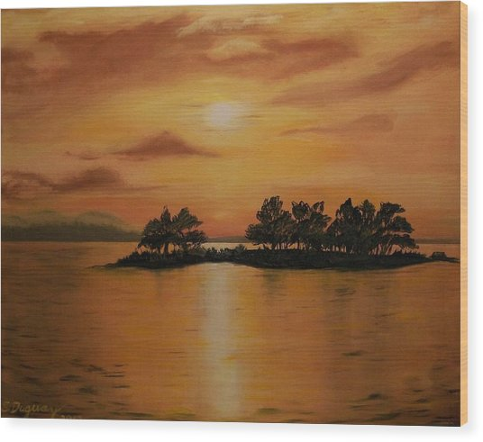 Lac La Biche  Sunset Wood Print