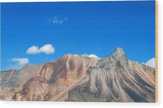 Ladakh 2 Wood Print by Kees Colijn