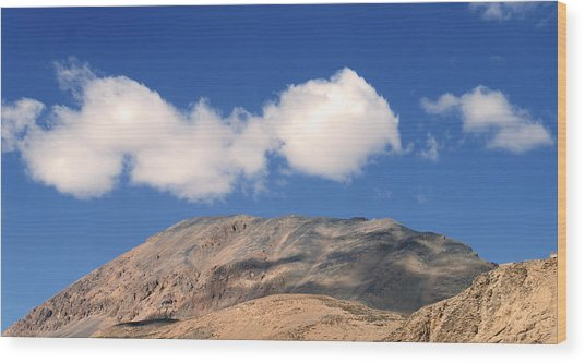 Ladakh 3 Wood Print by Kees Colijn