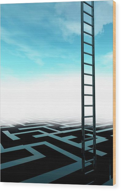 Ladder And Maze Wood Print by Victor Habbick Visions/science Photo Library