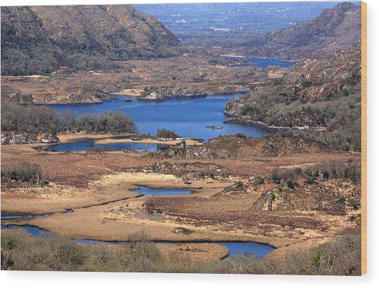 Ladies View Killarney National Park Wood Print