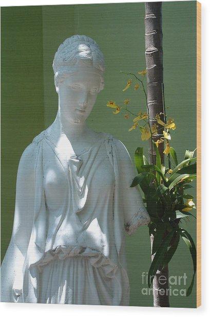 Lady In Garden Wood Print