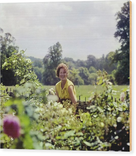 Lady Renee Iliffe At Basildon Park Wood Print