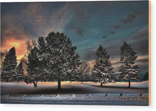 Lady Winter  Bringing A Cold Snap Wood Print