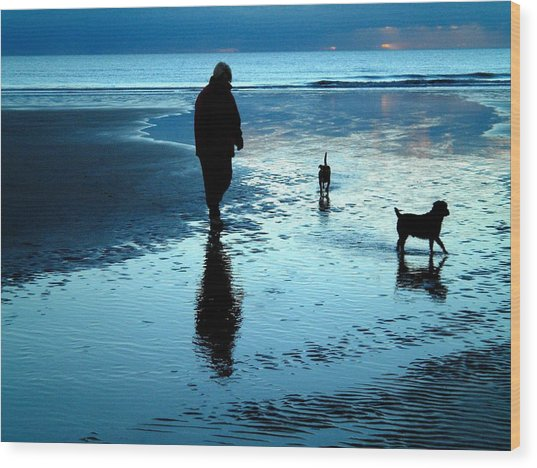Lady With The Little Dogs Wood Print