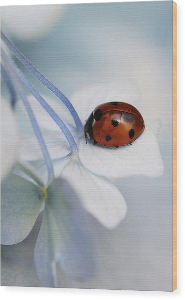 Ladybug Wood Print by Ellen Van Deelen