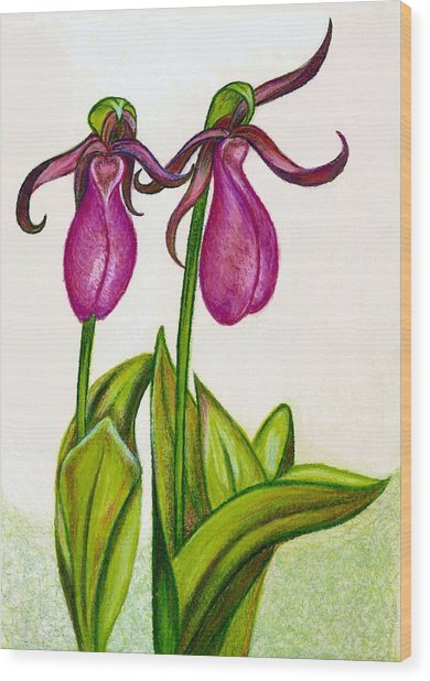 Lady's Slipper Wood Print