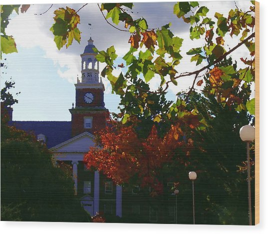 Lafayette College - Easton Pa Wood Print by Jacqueline M Lewis