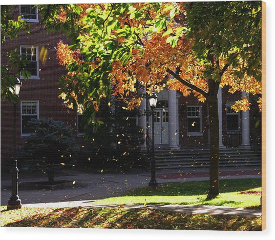 Lafayette College Easton Pa In Autumn Wood Print by Jacqueline M Lewis