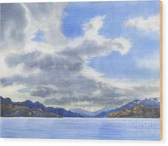 Lago Grey Patagonia Wood Print by Sharon Freeman