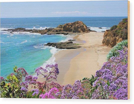 Laguna Beach Coastline Wood Print