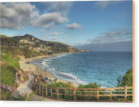 Laguna Beach Shoreline Wood Print