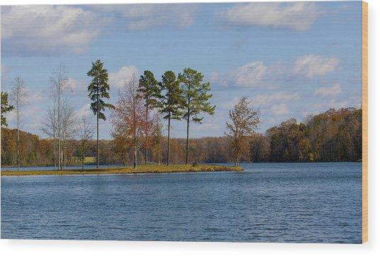 Lake Anna 4 Wood Print
