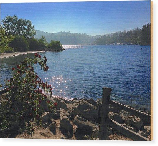 Lake Arrowhead Wood Print