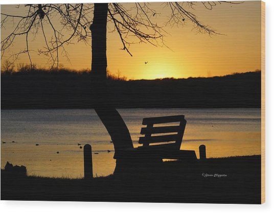 Lake Carlos State Park Sunset Wood Print