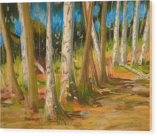 Lake Champlain Woods Wood Print by Valerie Lynch