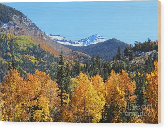 Lake City In The Fall Wood Print