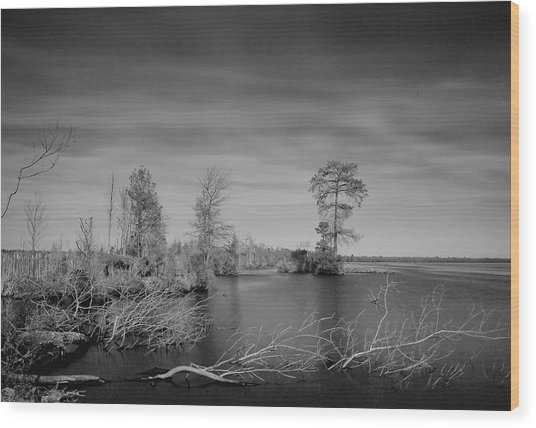 Lake Drummond Wood Print