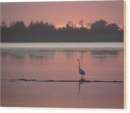 Lake Earl Sunset  Wood Print