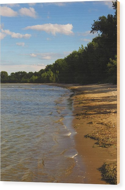 Lake Erie Shore 3 Wood Print
