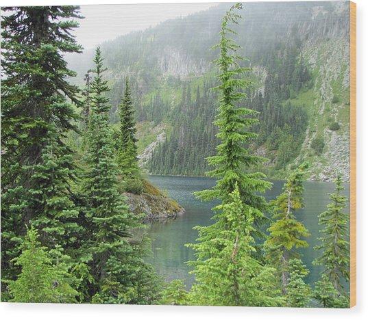 Lake Eunice II Wood Print