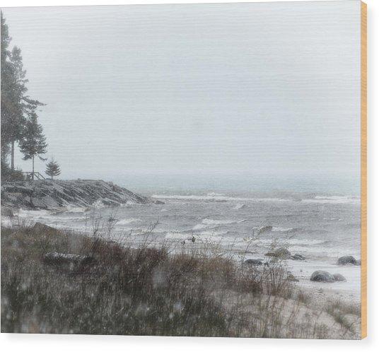 Lake Huron Shorleline Wood Print