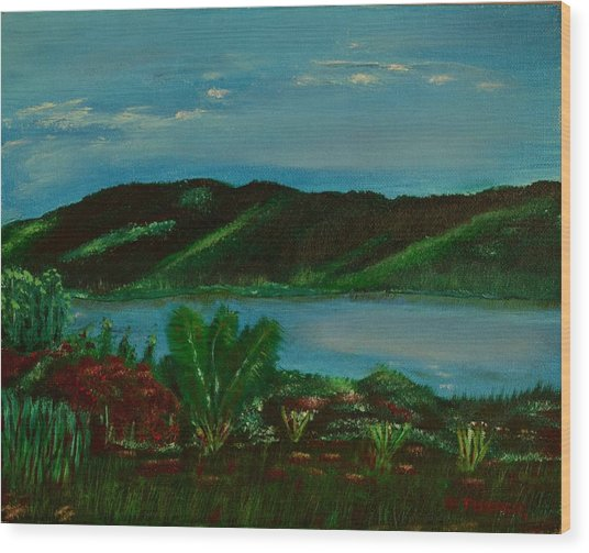Lake In The Mountains Photo Wood Print
