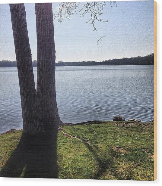 Lake In The Summer Wood Print
