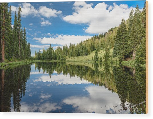 Lake Irene Wood Print by Robert Yone