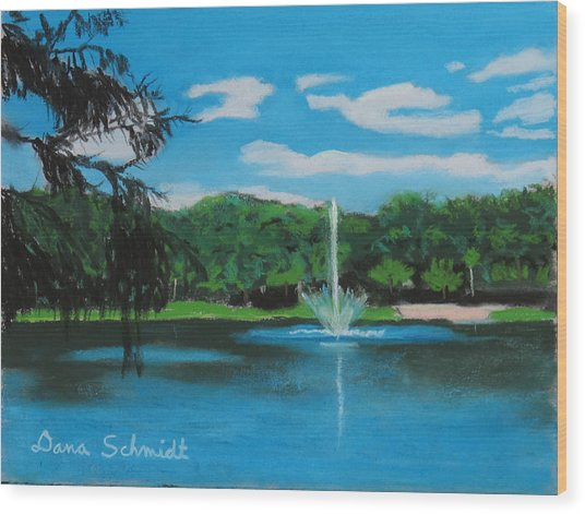 Lake Lilly In Maitland Wood Print