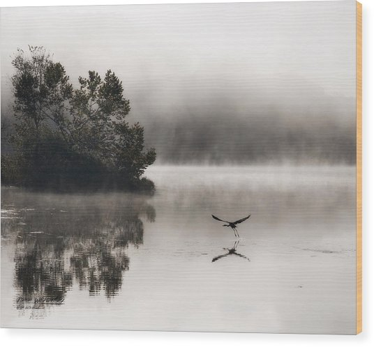 Lake Logan Fog And Heron - Flight Wood Print