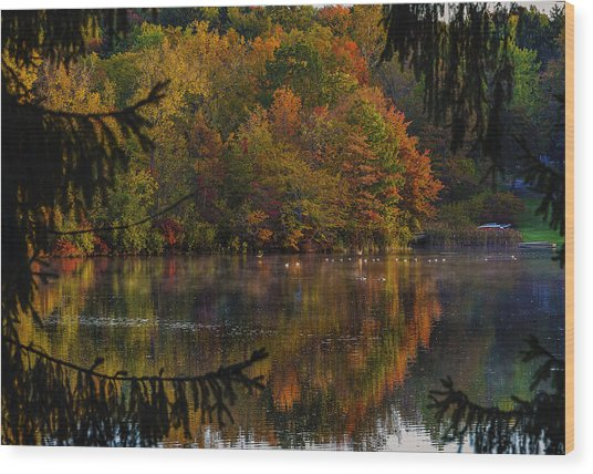 Lake Lucerne Ohio Wood Print