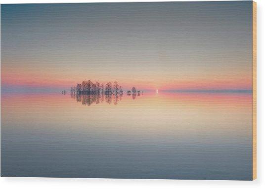 Lake Mattamuskeet Memory Wood Print by Liyun Yu