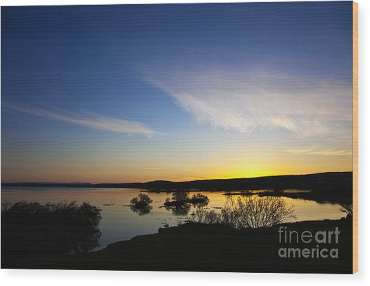 Lake Myvatn Wood Print