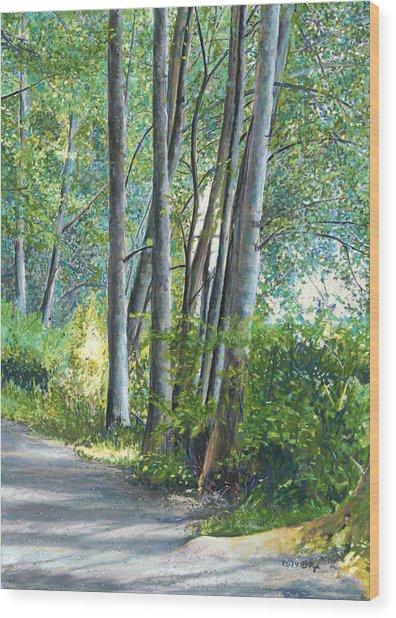 Lake Padden Series - Kathleen Keller Memorial Bench Wood Print