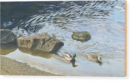 Mallard - Drake And Hen Wood Print