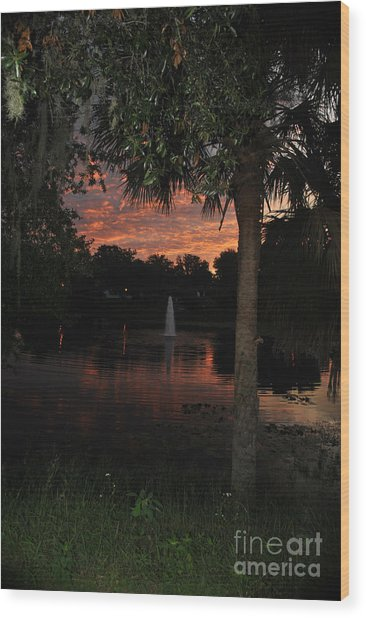 Lake Play Florida Wood Print