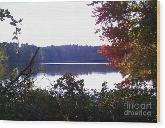 Lake Raleigh I Wood Print