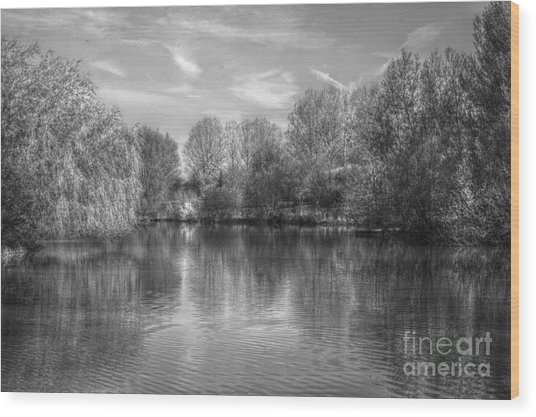Wood Print featuring the photograph Lake Reflections Mono by Jeremy Hayden