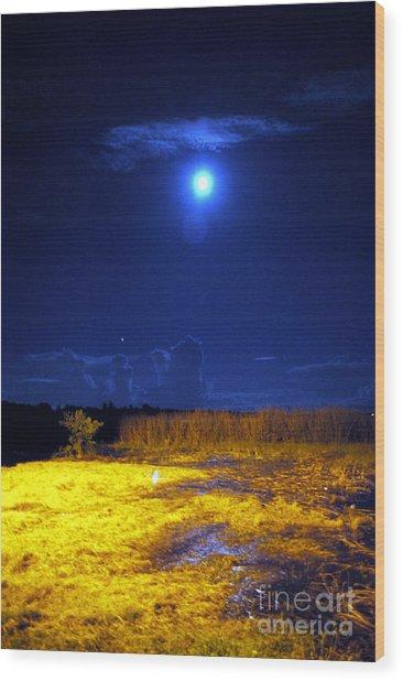 Moonrise Over Rochelle - Portrait Wood Print