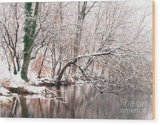 Lake Roland 1 Wood Print