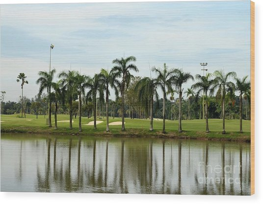 Lake Sand Traps Palm Trees And Golf Course Singapore Wood Print