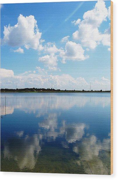 Lake Sears 000 Wood Print by Chris Mercer