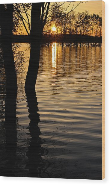 Lake Silhouettes Wood Print