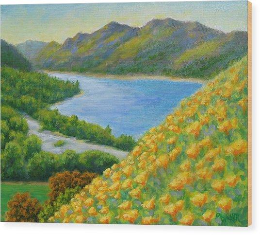 Lake Sonoma Poppies Wood Print by David LeRoy Walker