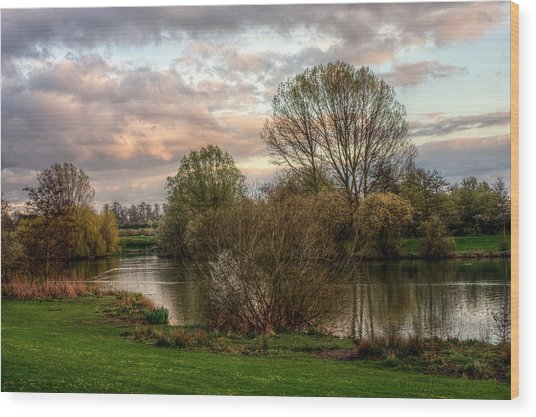 Wood Print featuring the photograph Lake Sunset by Jeremy Hayden